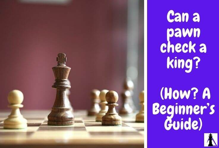 can a pawn check a king