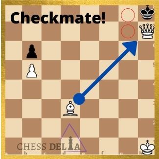 what-is-checkmate-in-chess