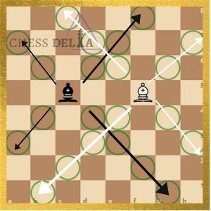 landing squares of bishop-explained image