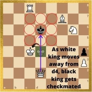 can-a-king-kill-a-king-in-chess