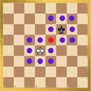 can-a-king-checkmate-another-king-explained