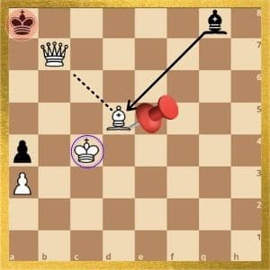 can-a-pinned-piece-be-involved-in-checkmate