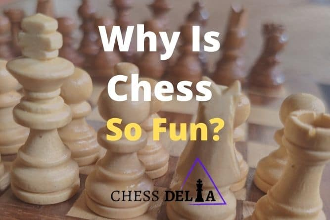 why-is-chess-so-fun