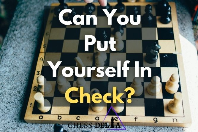 can-you-put-yourself-in-check