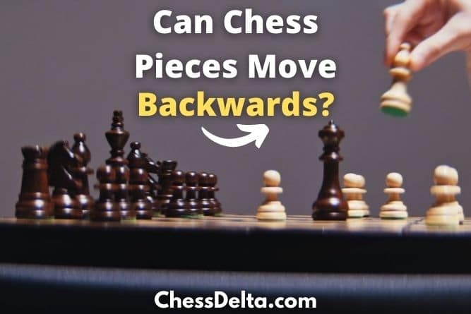 can-chess-pieces-move-backwards