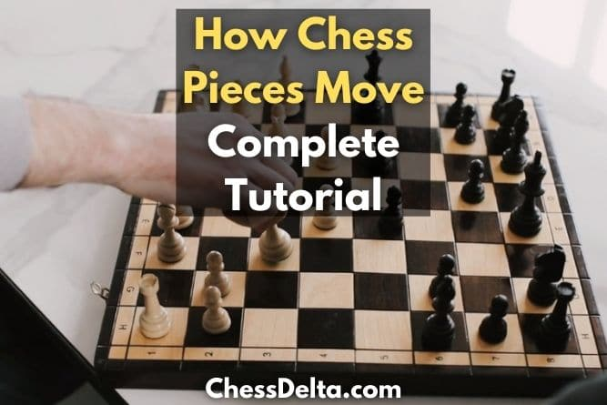 chess-pieces-moves