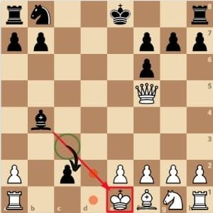 can-a-pawn-checkmate-a-king