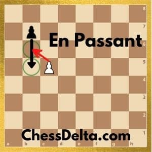 can-pawns-move-backwards-in-chess