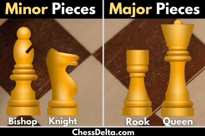 minor-pieces-and-major-pieces-in-chess